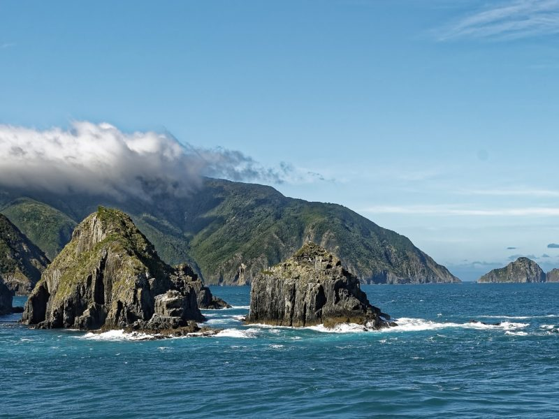 Yachtcharter Neuseeland Titelbild